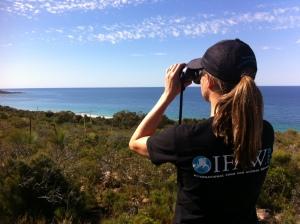 Sharon from IFAW assists the theodolite team with whale tracking